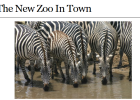 Webquest: The new zoo in town | Recurso educativo 35402