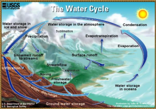 Webquest: The water cycle | Recurso educativo 35408 - Tiching
