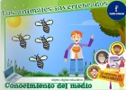 Los animales invertebrados | Recurso educativo 47207