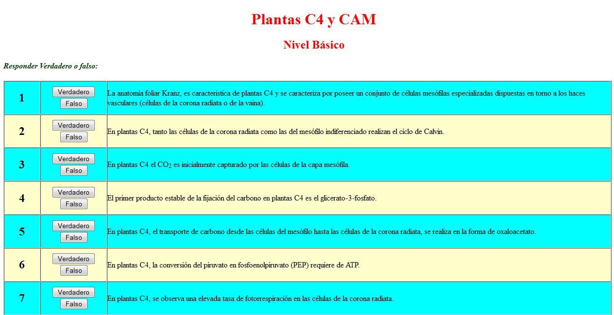 Plantas C4 y CAM   Recurso educativo 47648 - Tiching