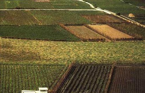 Tipos de suelo recurso educativo 49107 tiching for Recurso clausula suelo