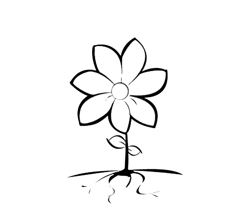 Flor de siete pétalos para colorear. | Recurso educativo 103117 ...