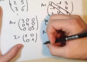Matrices traspuestas | Recurso educativo 121595
