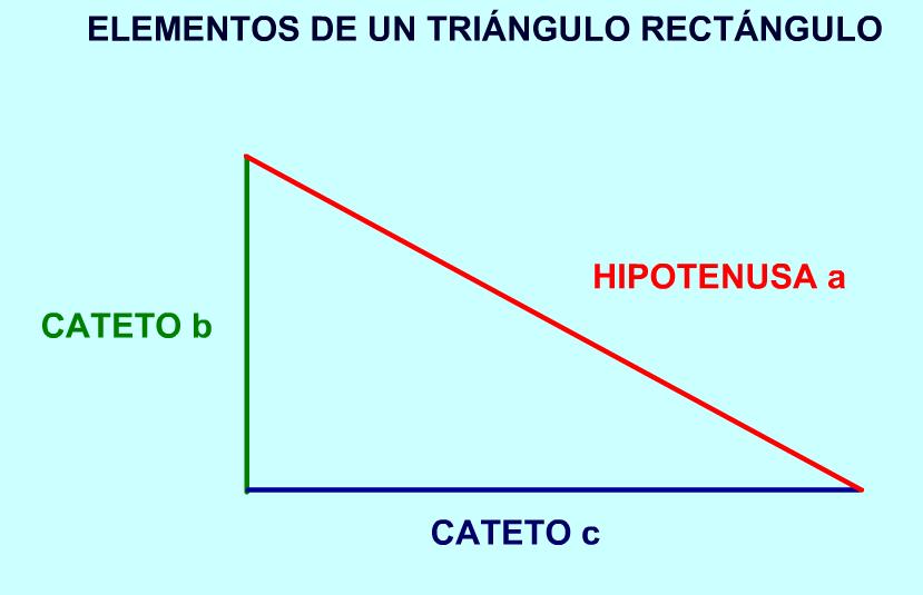 Teorema de pit goras recurso educativo 42881 tiching for Elementos de un vivero