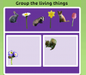 Living things | Recurso educativo 63310